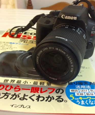 IMG_9895.jpg