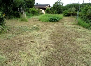 2015_08 22_また草刈り、耕運・4