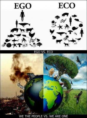 ego_vs_eco.jpg