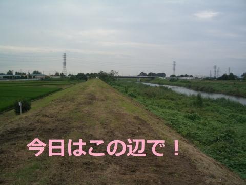 CIMG5154.jpg