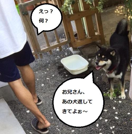 まるちゃん2015082706