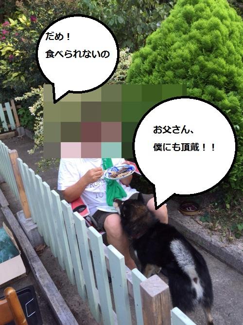 まるちゃん2015083005