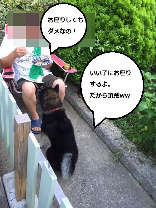 まるちゃん2015083006