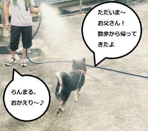 まるちゃん2015092201