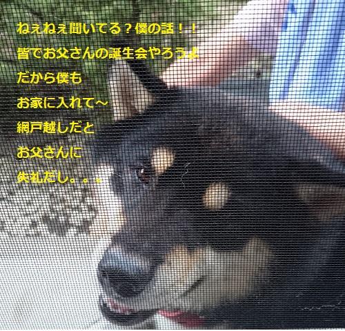 まるちゃん2015092302