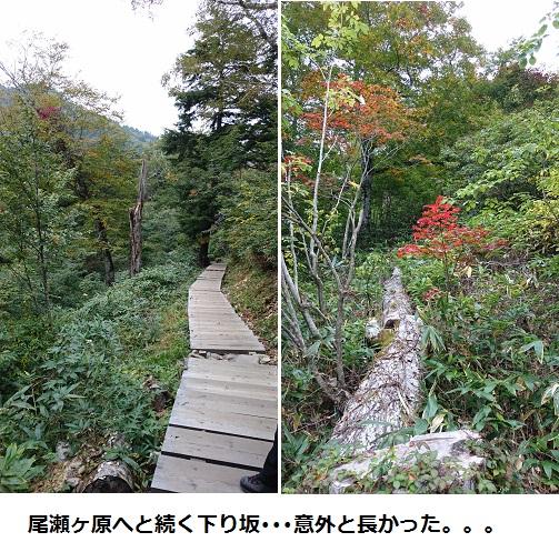 まるちゃん2015093001