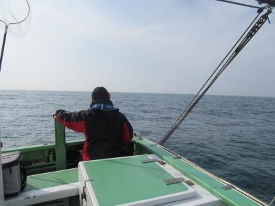 汐留さんとナギの海