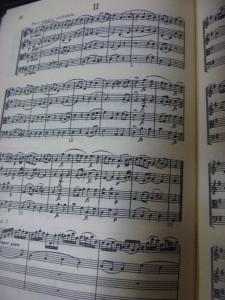 ハイドン弦楽四重奏曲「皇帝」2楽章冒頭