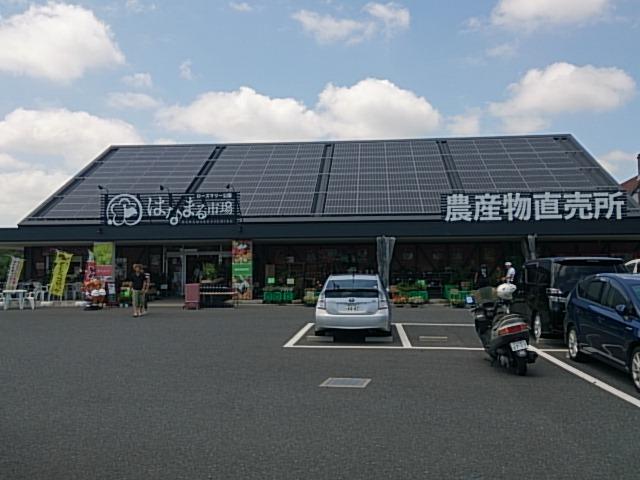 千倉-50