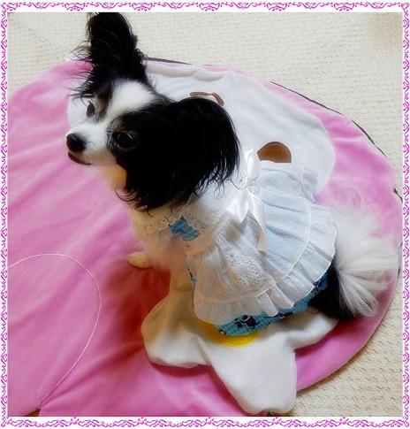 ルビーちゃんの着画☆彡