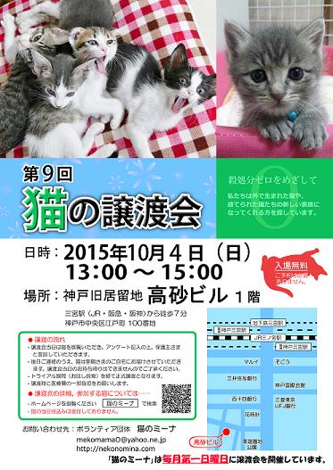 猫の譲渡会_10月