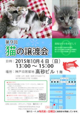 猫の譲渡会_10月[1][1]