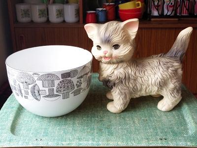 きのこ&猫