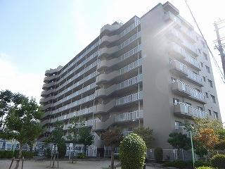 P1010046 (12)
