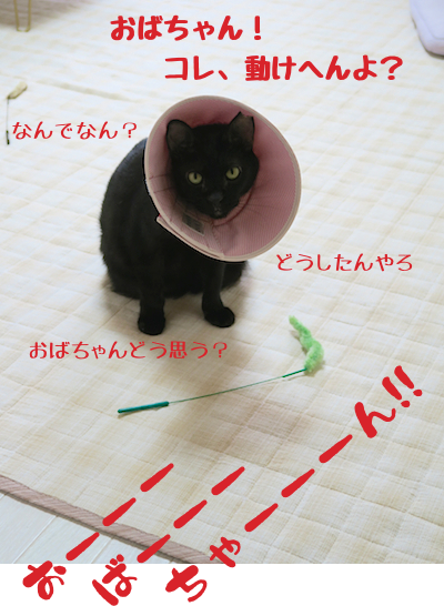 201509032.png