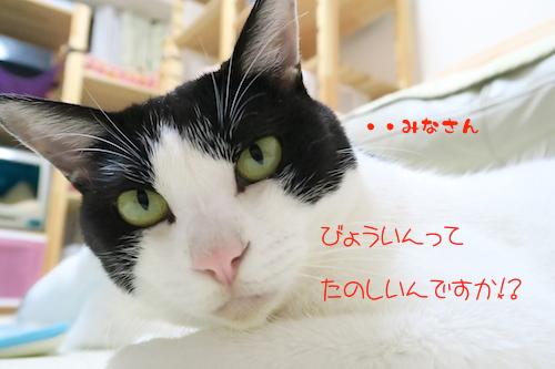 201509143.jpg