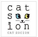 cat_socion.jpg