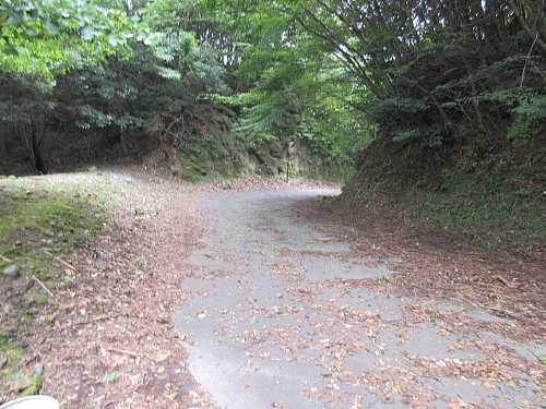 IMG_0041 林道に出ます10:25