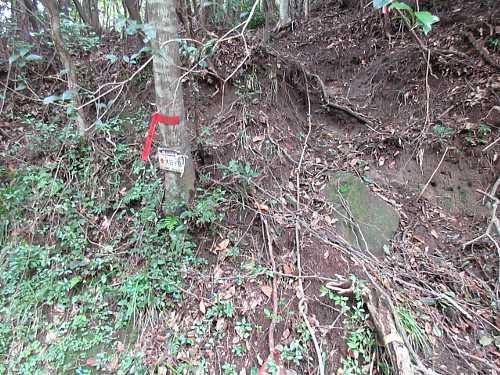 IMG_0040林道の先にコース最長のロープのある急登があります