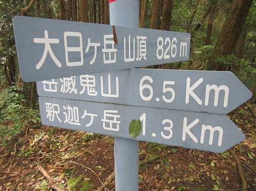 IMG_0056 最終目的地の大日ヶ岳826m 12:05~12:27  昼食を済ませ往路を戻ります