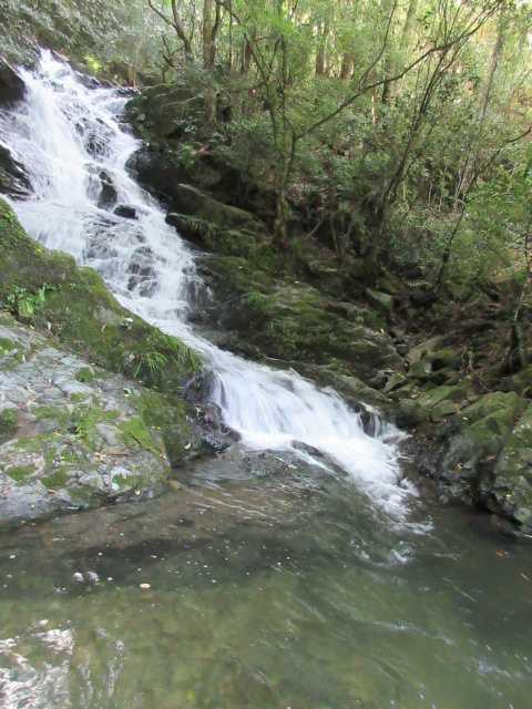 IMG_0186  五の滝
