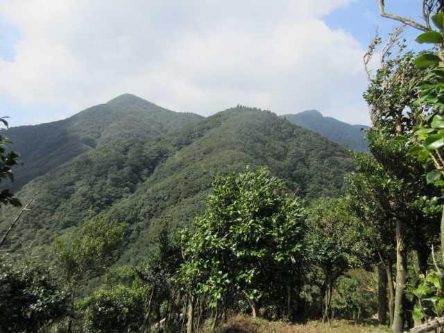 IMG_0232 宇土浦越え上より手前から860mピーク、屏山、古処山を振り返る