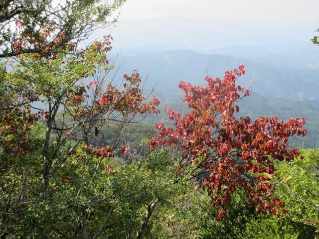 IMG_0258 古処山付近にて秋めいてきました