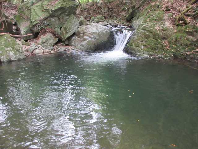 IMG_0386 緑の渓流