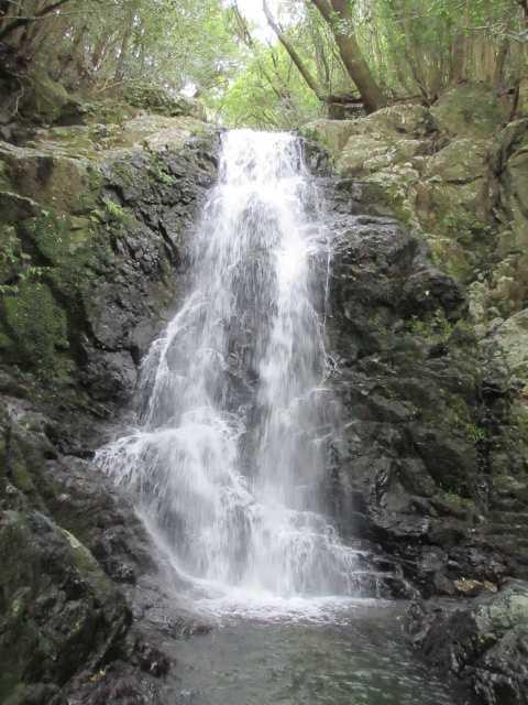 IMG_0393 七の滝