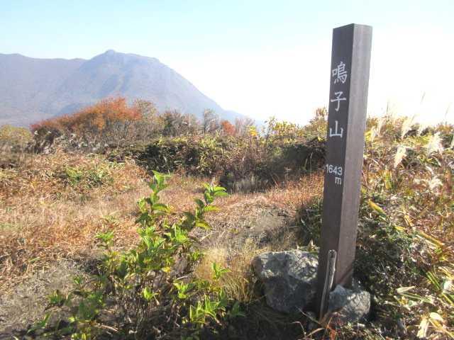 IMG_0054 リンドウの咲く鳴子山です初夏にはオオヤマレンゲレンゲで知られた山だが他は静かな山です