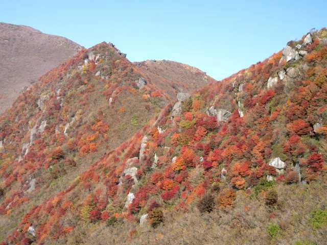 IMG_0050鳴子山前衛峰の紅葉