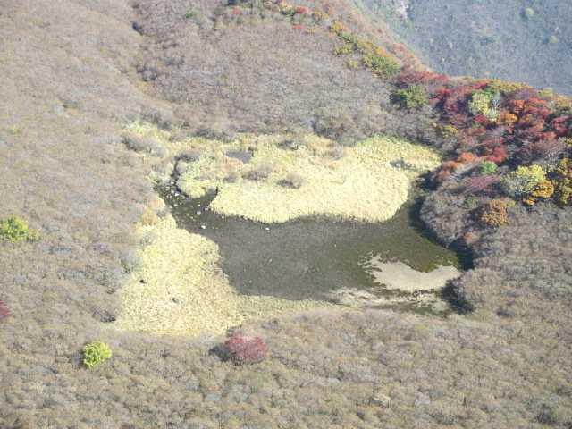 IMG_0070片が池をアップ色んな動物の形に見られているようです