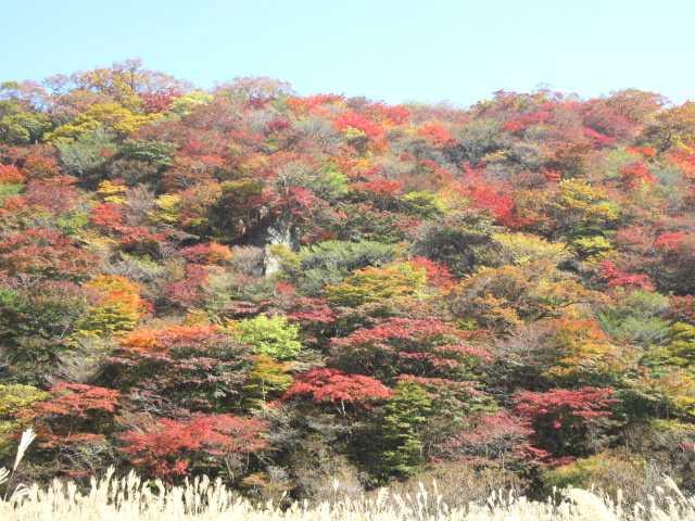 IMG_0115 佐渡窪の紅葉です