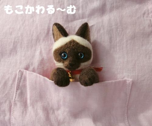 シャム猫ポケット1