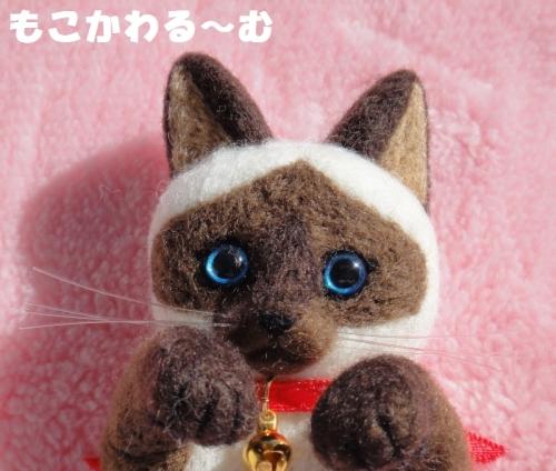 シャム猫ポケット5