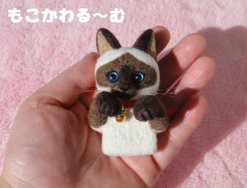 シャム猫ポケット6