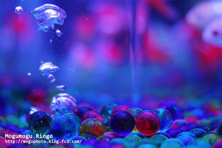 気泡とビー玉