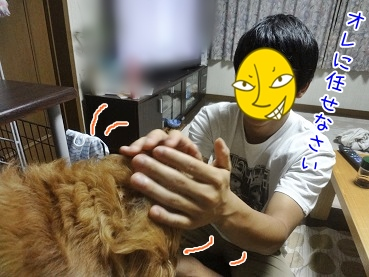 kinako3218.jpg