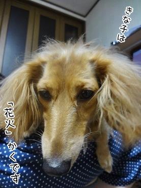kinako3220.jpg