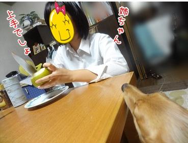 kinako3238.jpg