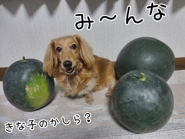kinako3250.jpg