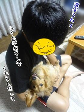 kinako3266.jpg
