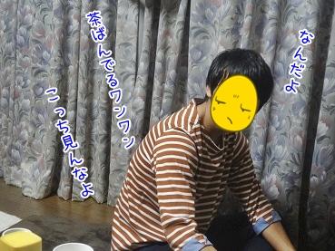 kinako3293.jpg