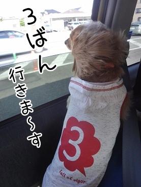kinako3296.jpg