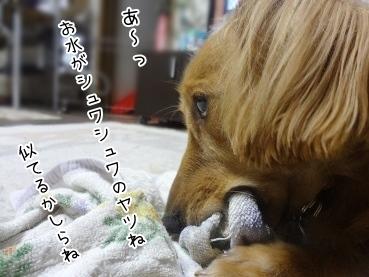 kinako3302.jpg
