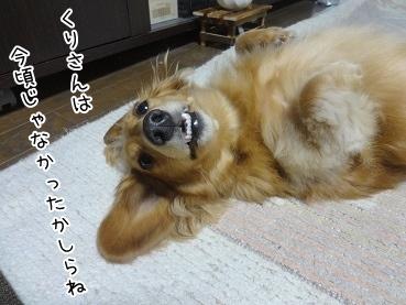 kinako3324.jpg