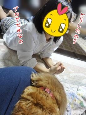 kinako3329.jpg