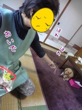 kinako3344.jpg