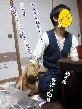 kinako3377.jpg