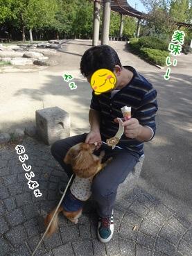 kinako3386.jpg